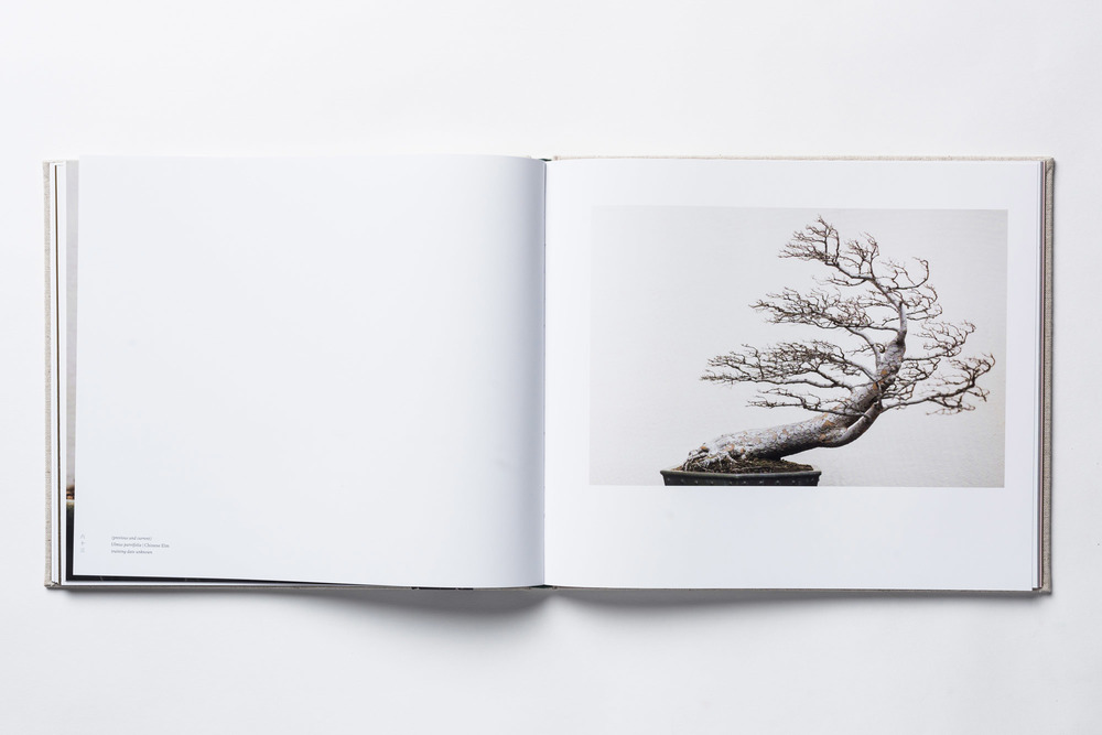 bonsai-book-3.jpg