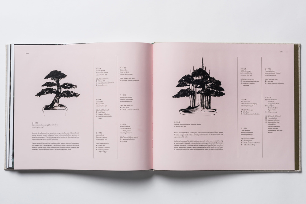 bonsai-book-5.jpg