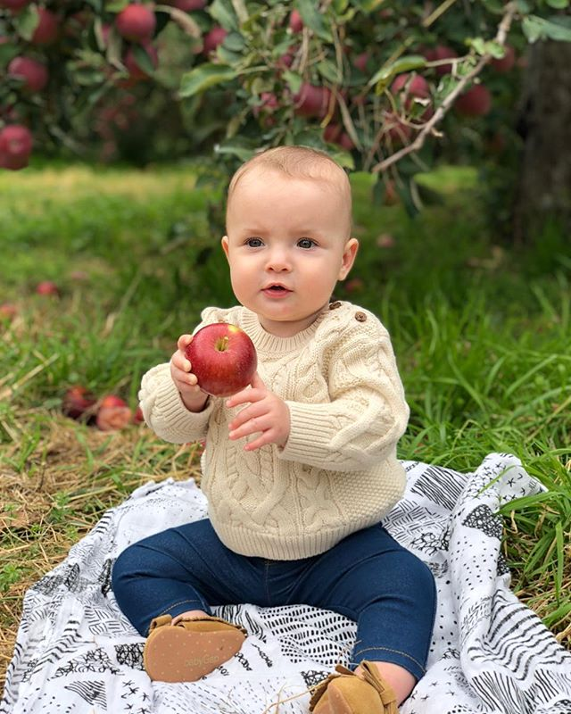 🍎 🍎🍎 I had this super unique and unheard of idea to go apple picking this weekend and take pictures of my new baby. Yay for fall! #applepicking #fishkillfarms #agnesjames #apples