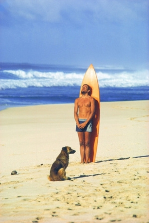 41++meditate+use+Dog+and+Surfer4060.jpg