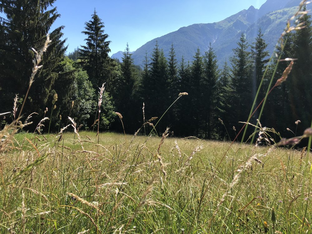 Ausblick_Berg-Chalet.jpg
