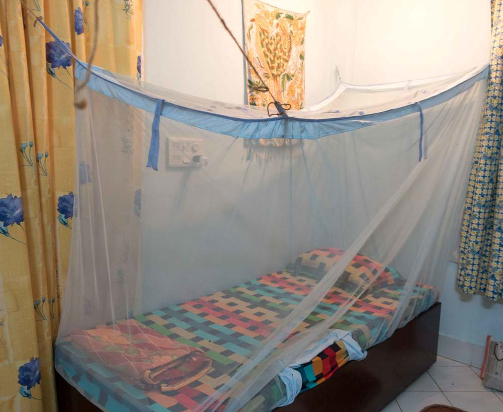 Cozy bed with mosquito net.
