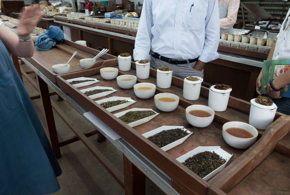 Just a small part of our cupping. See the rows of cups in the background? That's a fraction of how many teas a professional tea taster would taste.