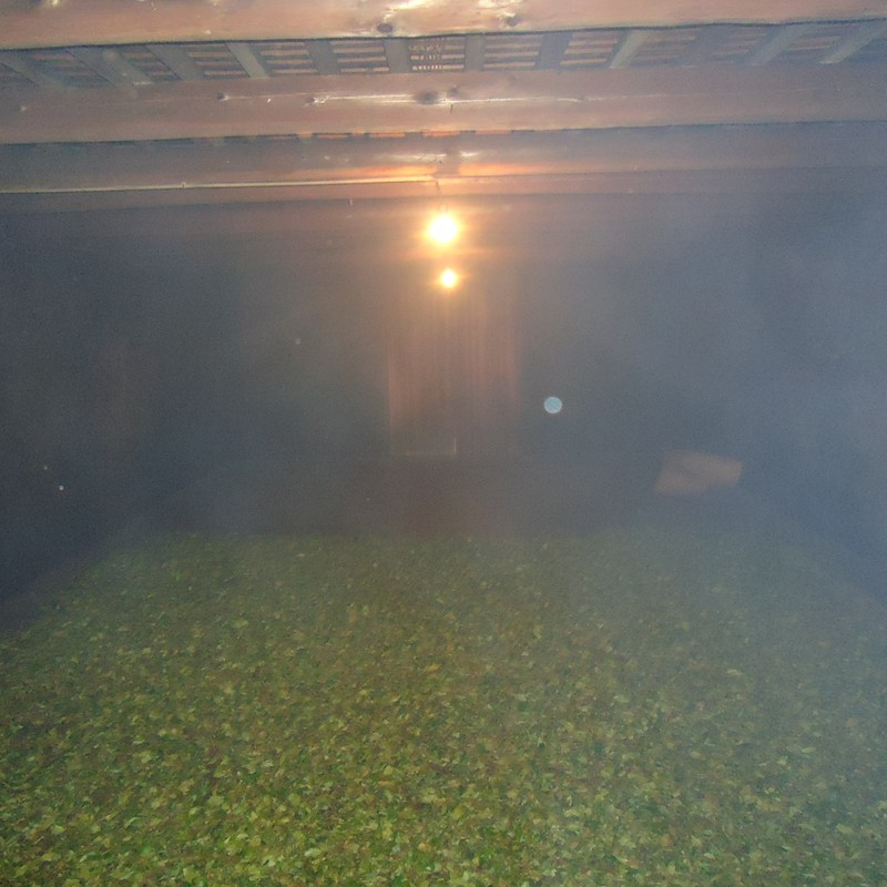 Tea leaves being smoked with pine to produce Lapsang Souchong. Photo credit:http://www.cantonteaco.com/