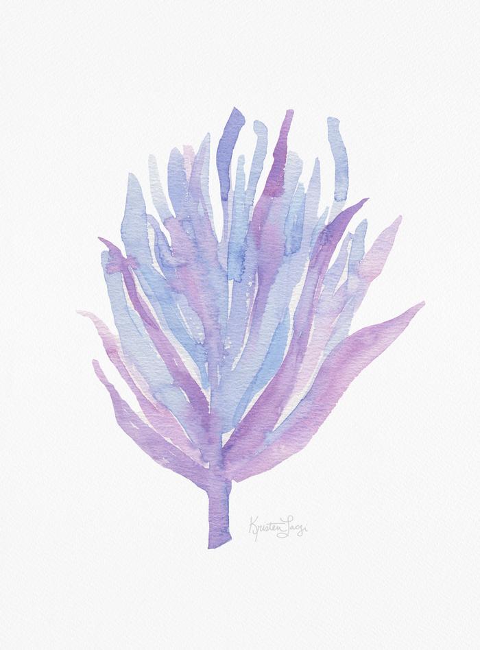 Kristen Laczi Mermaid Seaweed