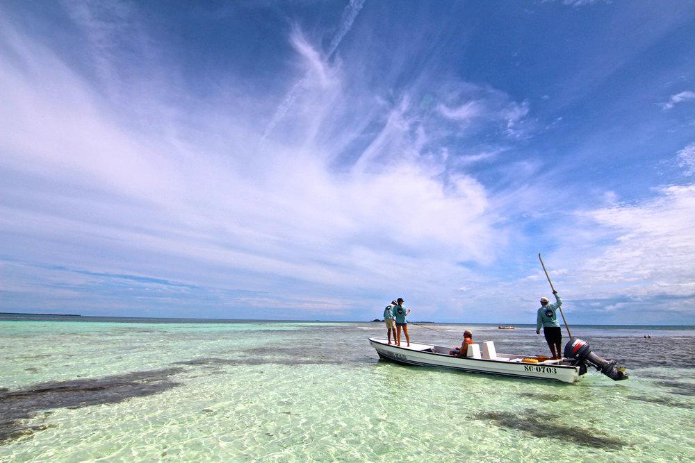 BLUE HORIZON FLY FISHING