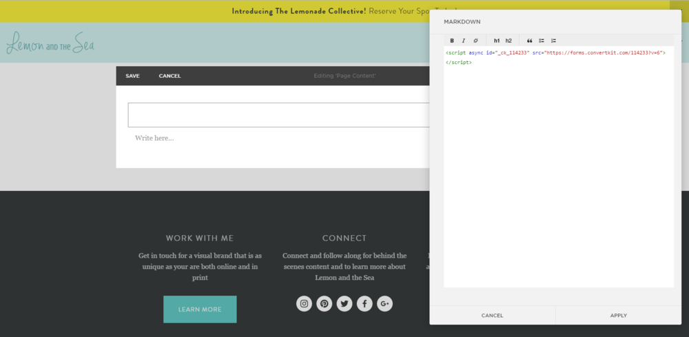 How to Integrate ConvertKit and Squarespace | Lemon and the Sea
