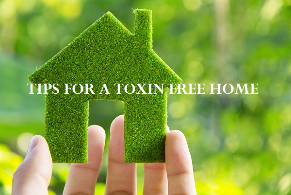 Tips-for-Making-Your-Home-Eco-Friendly-1-1.jpg