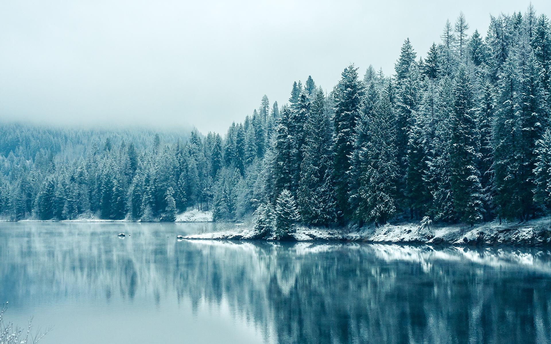 Znalezione obrazy dla zapytania winter nature