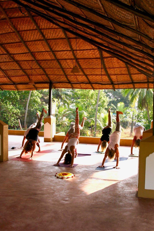 yoga india retreat.jpg