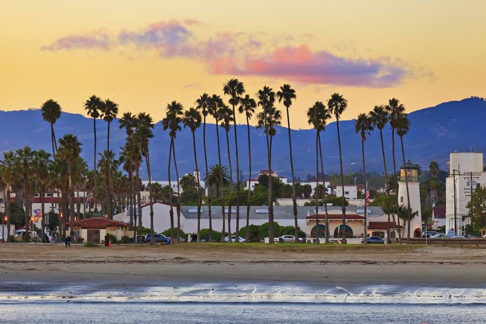Santa Barbara palm trees.jpg