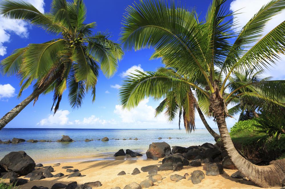 iStock_hawaii.jpg