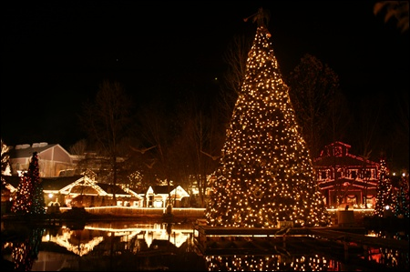 christmas tree at dollywood.jpg
