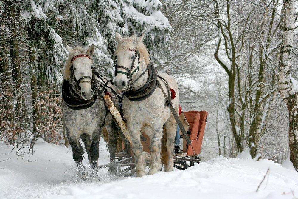 Menno-Hof Amish slash Mennonite Information Center.JPG