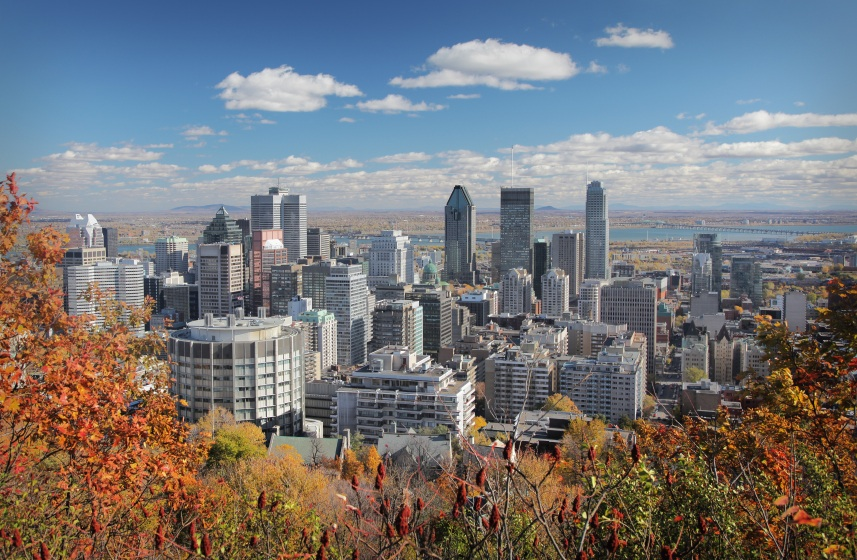 montreal in fall.jpg