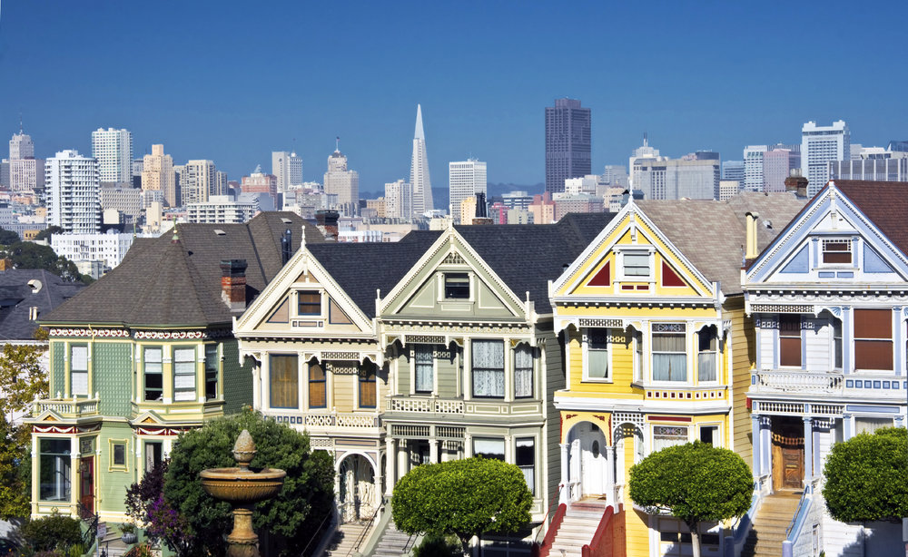 Painted Ladies vibrant.jpg