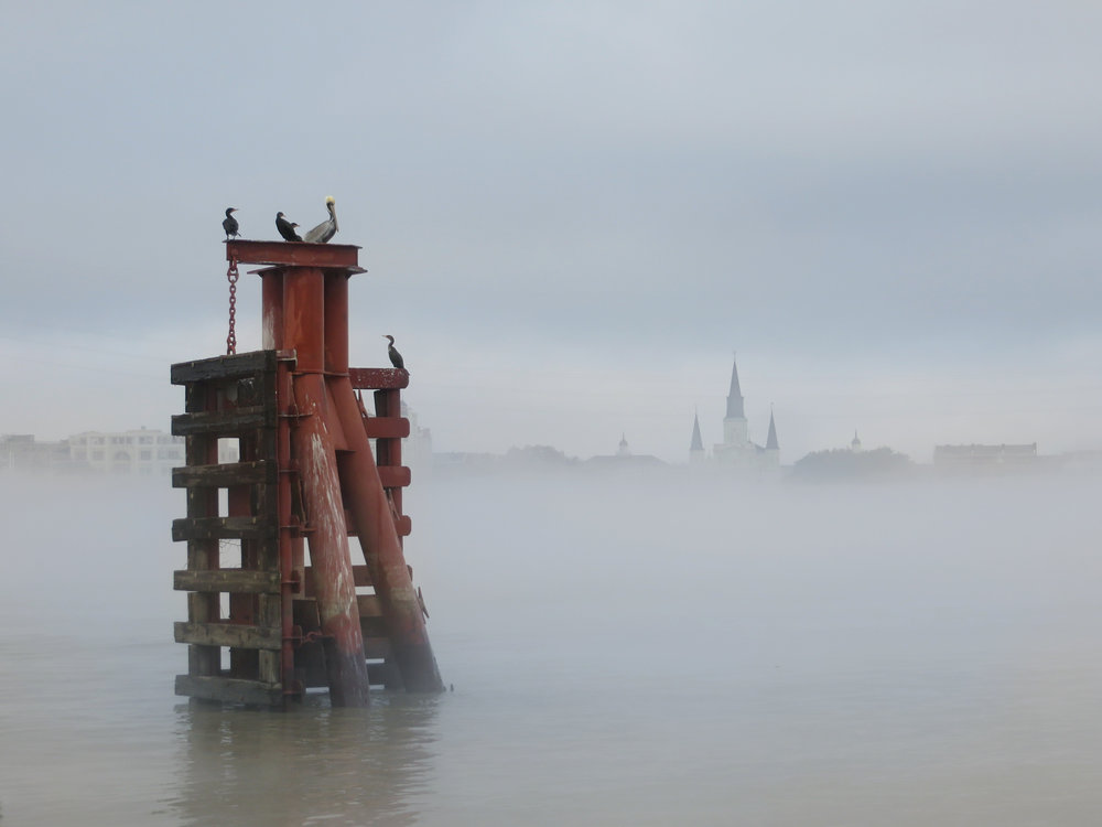 102 ABC_IO_Cathedral In Fog w Pelicans_Amyadj.jpg