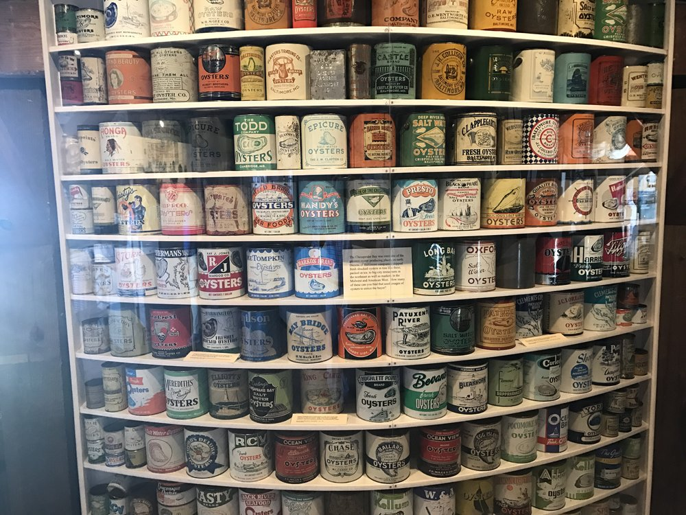 Collection of Old Oyster Cans at the Chesapeake Bay Martime Museum