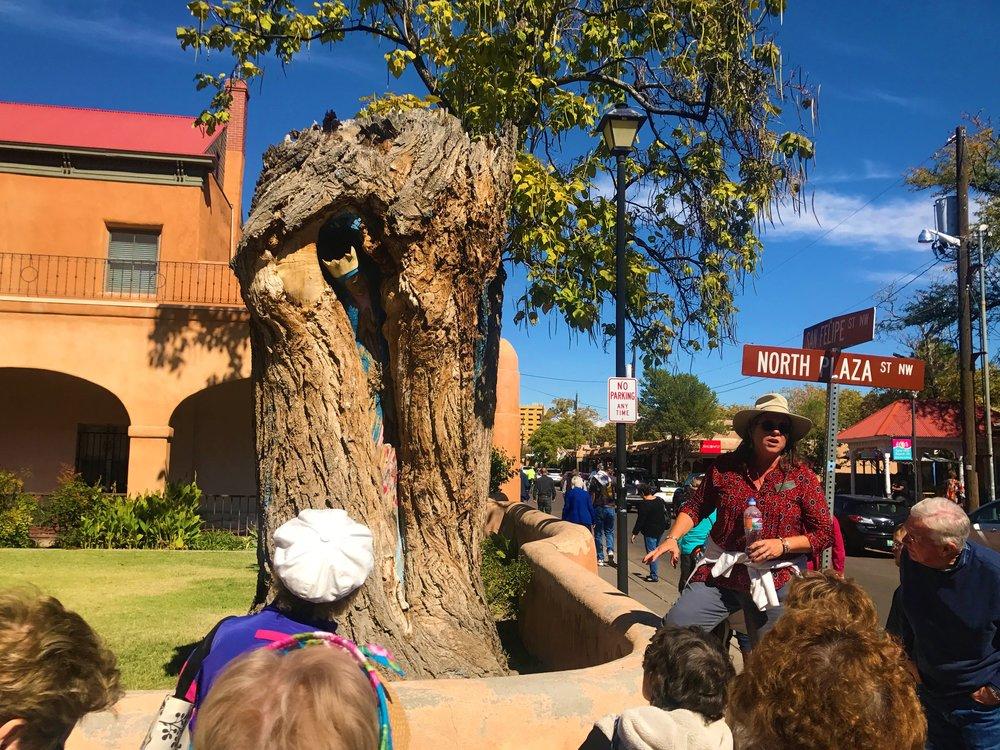 Our local guide Tam showing us around Albuquerque