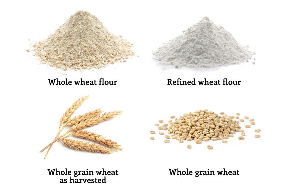 faq grains wheat flour and bread healthy grains institute
