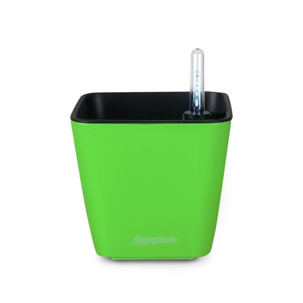 1 - Green.JPG