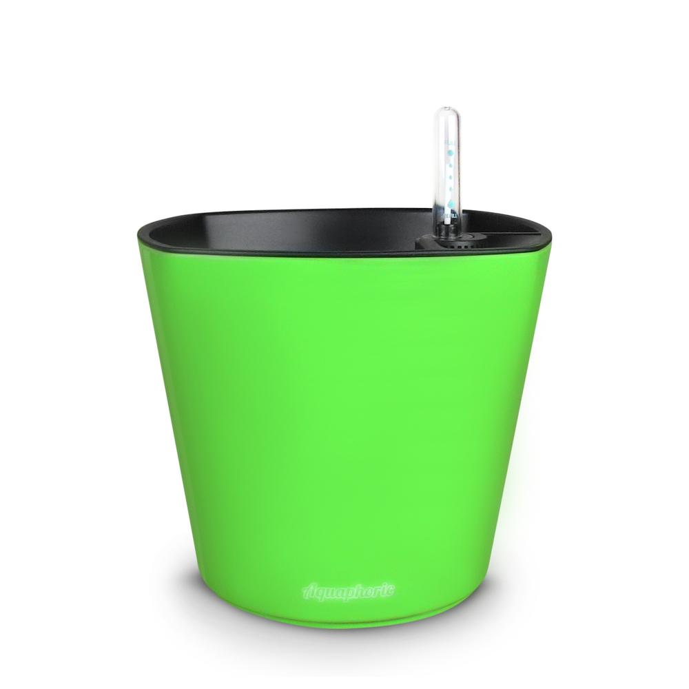 1 Green.JPG