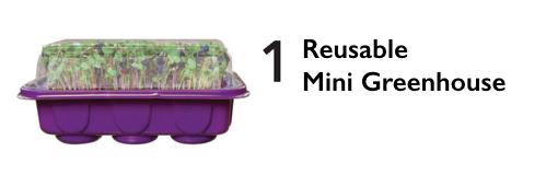 Mini Greenhouse.jpeg
