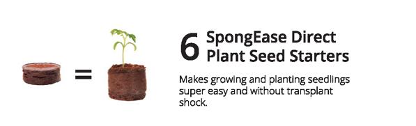 6 SpongEase.jpeg