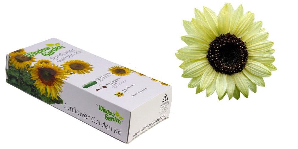 Garden Starter Kits