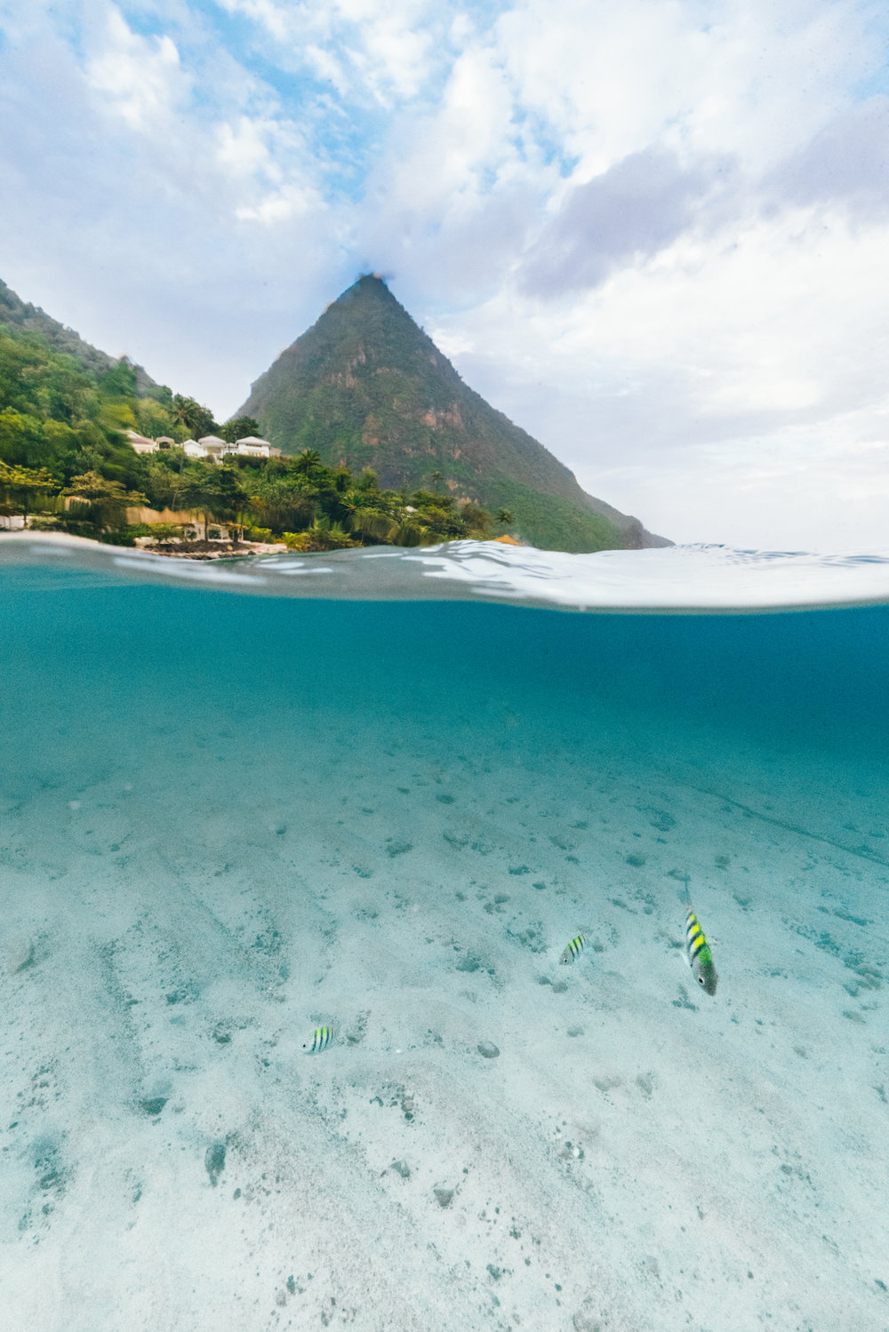 Underwater in St. Lucia with Piton mountains.jpg