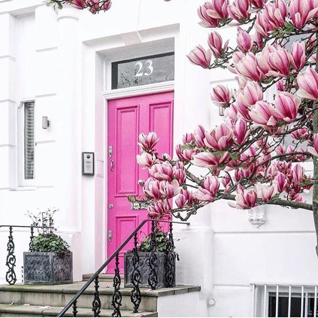 Paskalya tatilini firsat bilip herkes tatile gidince Londra bize kaldi, bizde Nisan'da gelen erken yaz havasinin tadini cikariyoruz 🤗🌸 | 📷 @london | #happyeaster ---------------------------------------------------#londonlife #lifeinlondon #mylondon #london #londonbylondoners #lovelondon #prettycitylondon #bestoflondon #london_enthusiast #londonlive #londontoday #happyeaster🐰