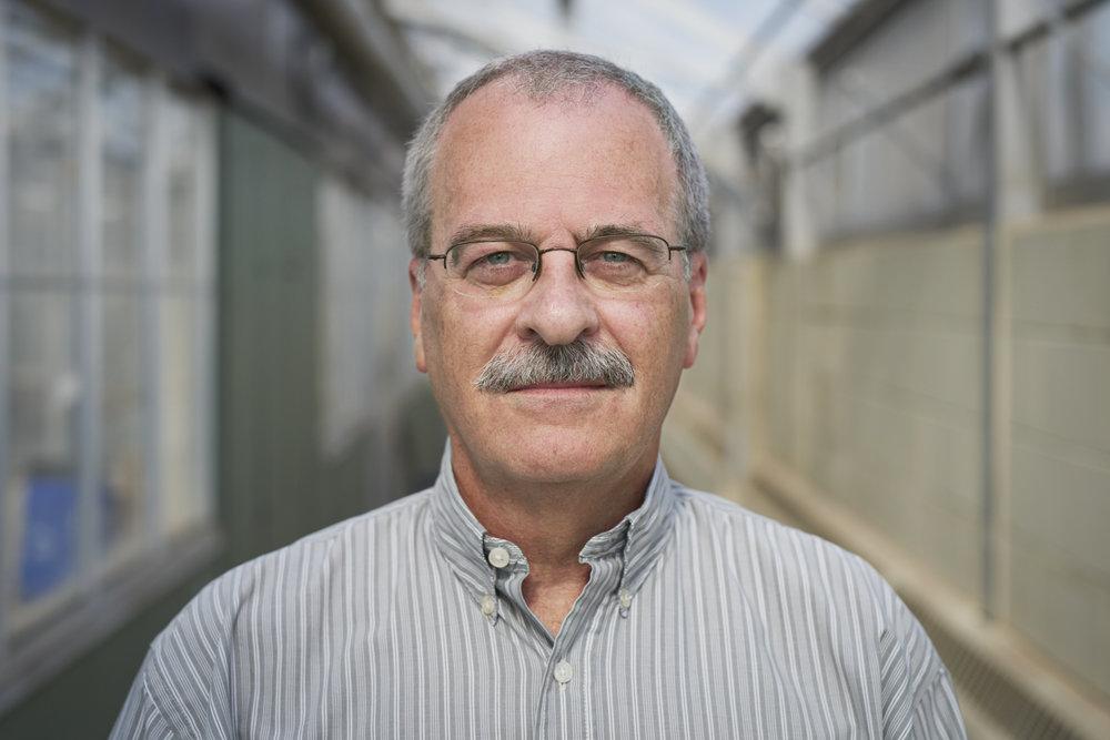 Philip Pardey, Professor
