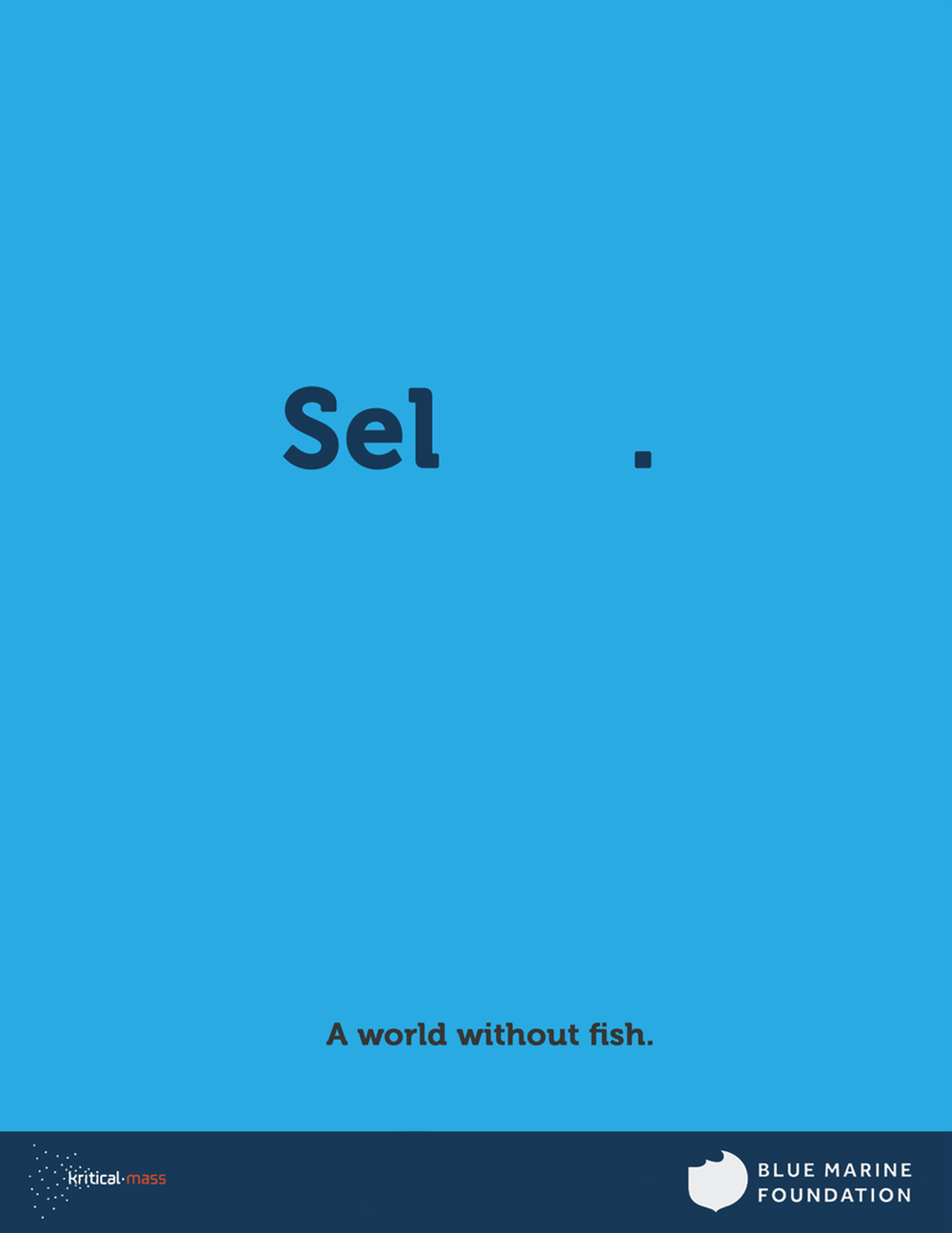 No fish.jpg