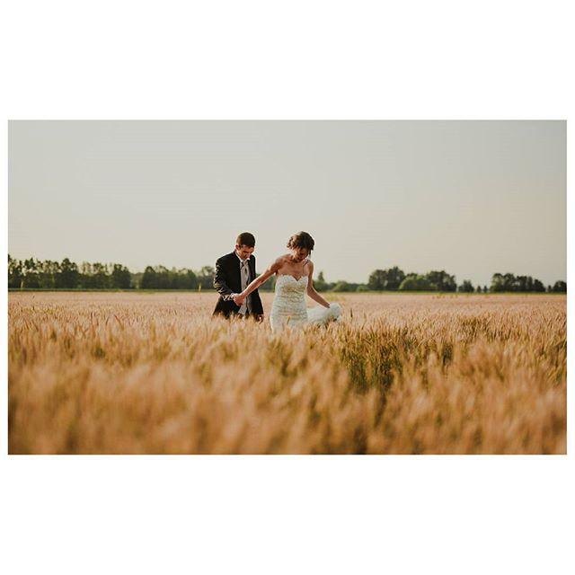 V + M / Wedding in Verona - Italy  www.mariocasati.com  #instawed  #gardasee #bridestory #wheatfielditaly  #chicweddingverona #italianweddingphotographer #creativewedding #weddingverona #fotografoverona  #weddingdress #bestweddingphotography #matrimonioverona #matrimonio #weddingcouple #weddingitaly #weddingdetails #wedding #verona #weddingphotography #mariocasati