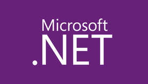 Microsoft .NET is the development platform that drives the business technology of the top corporations in the U.S. You will master the tools and best practices of the platform.