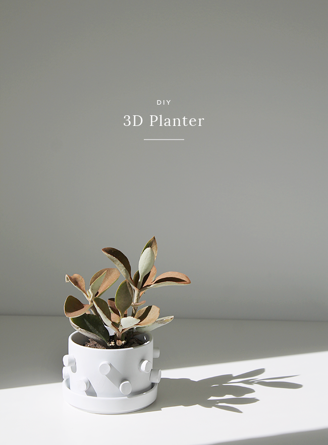 DIY-3D-Planter-almost-makes-perfect-1.png