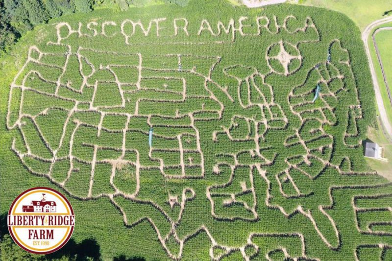 Liberty-Ridge-Farms_Corn-Maze-2017-800x533.jpg