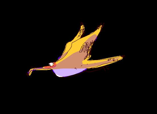 birdie0005.png