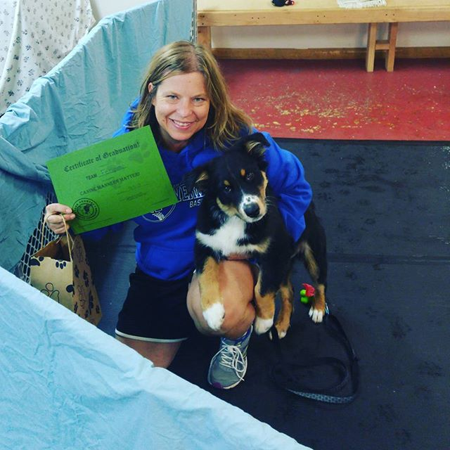 Congratulations Team Fenway for graduating Canine Manners!  @kuenzifamilypethospital @familypetboarding  #cutepuppiesofwi #waukeshadogtraining