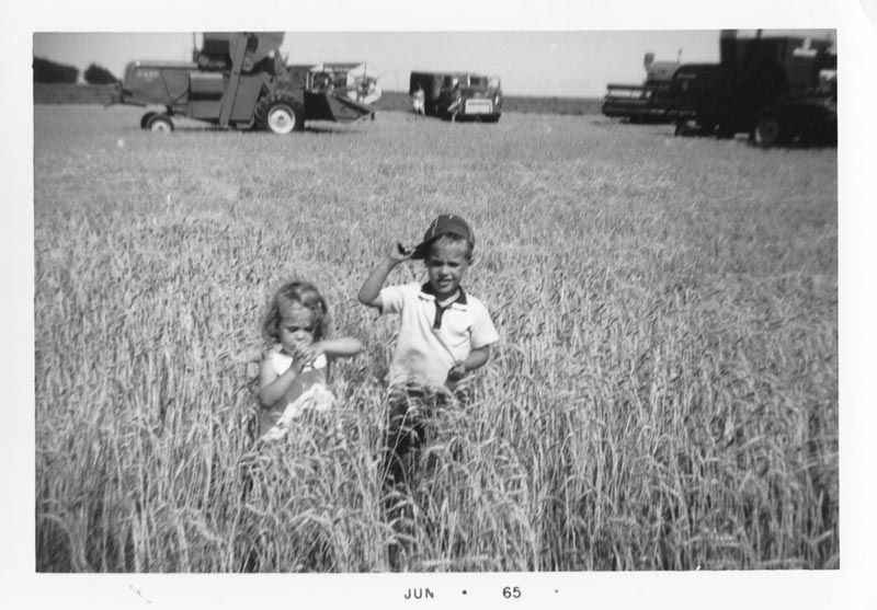 Harvest at Grandpa's (1965)
