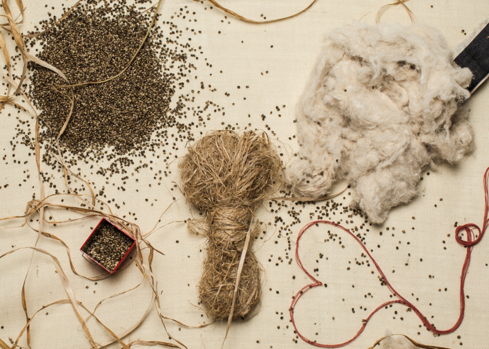 Crucial to durability and Eco-friendliness, the hemp fibers were hand picked by professionals to be woven into denim. The long bast fibers are usually spun in water to provide an extremely high tensile strength.