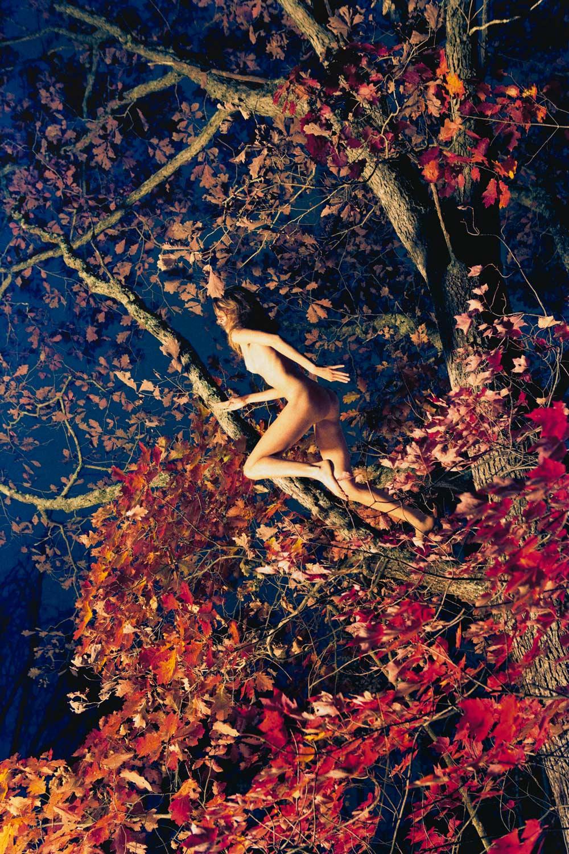 Marieke (Fall Foliage),  2011