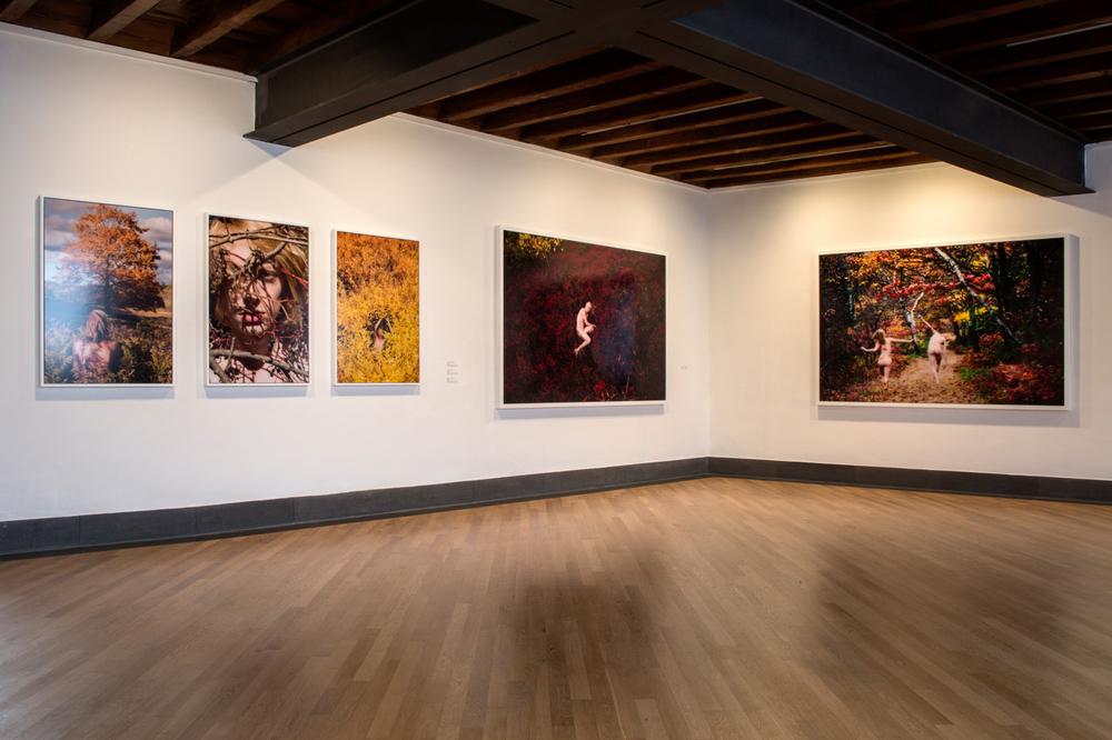 The Four Seasons, GAMeC (Galleria d'Arte Moderna e Contemporanea) Bergamo, Italy, 2016