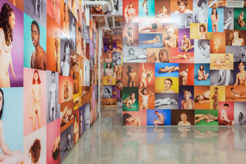 Team Gallery, NYC 2014