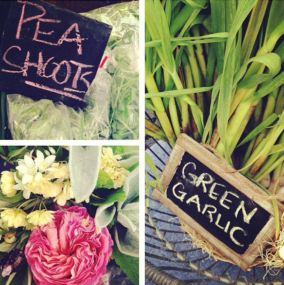 pea+shoots,+garlic+and+rose.jpg