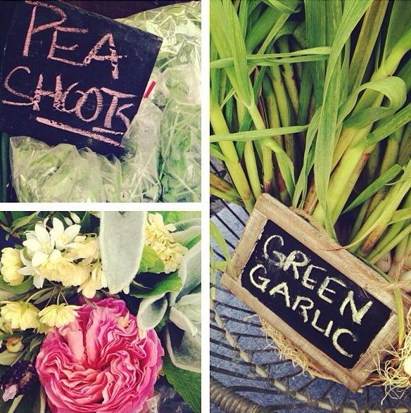 pea+shoots,+garlic+and+rose.jpg