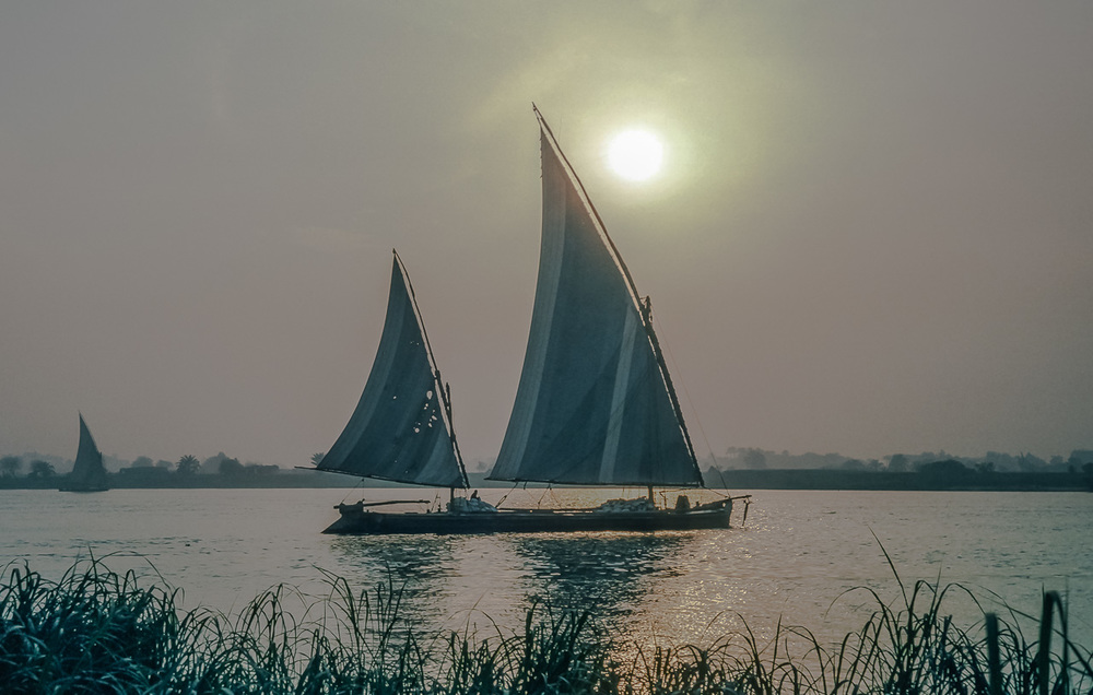 Felucca-Sailed Workboats Grace the Nile River