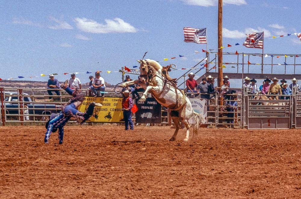 Rearing Bronco's Rider Flies, Shonto Stampede Rodeo
