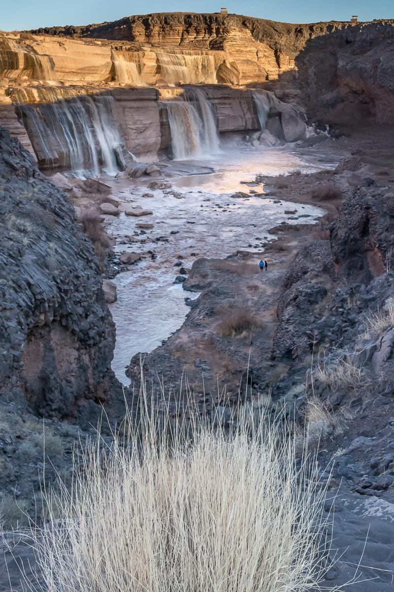 Water.Jones_T.--0235.jpg