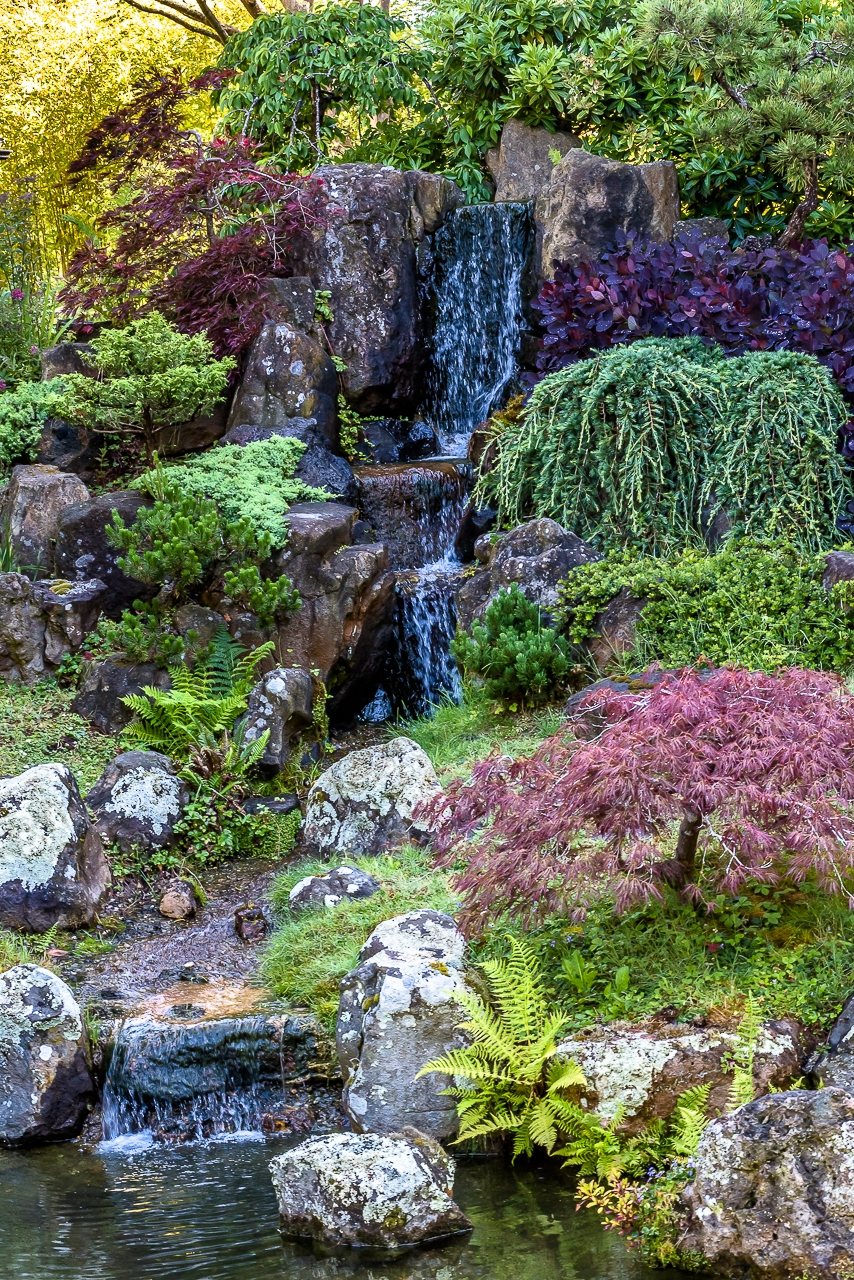 JAPANESE TEA GARDEN WATERFALL (2017)